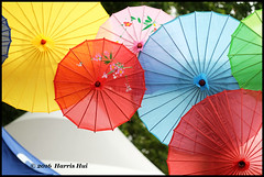 Umbrellas 雨傘運動 -  World Fest XT4062e (Harris Hui (in search of light)) Tags: harrishui fujixt1 digitalmirrorlesscamera fuji fujifilm vancouver richmond bc canada vancouverdslrshooter mirrorless fujixambassador xt1 fujixcamera fujixseries fujix fujixf60mmf24 democracy symbol colours roundshaped umbrellas umbrellamovement 雨傘運動 雨傘 chineseumbrellas 油紙傘 oilpaperumbrella richmondworldfestival worldfest worldfestival