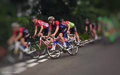 Sir Bradley Wiggins (deancolclough74) Tags: tattoo teamwiggins rapha roadbike cycling sandbach cheshire tob2016 dogma pinarello bradleywiggins