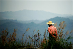 Along the canal (*Kicki*) Tags: man person hat mountains myanmar burma inle inlelake landscape shanstate