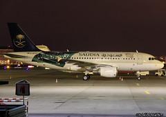 A319-100_Private_D-APTA-001 (Ragnarok31) Tags: airbus a319 a319100 saudi arabia government dapta flag drapeau arabie saoudite