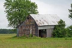 Illinois, Shelby County, Meramec Caverns (EC Leatherberry) Tags: illinois wall advertisement barn shelbycounty merameccaverns us51 vernaculararchitecture