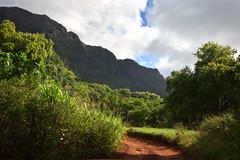 Ha'upu Mountains from Kipu Ranch (Emily Miller Kauai) Tags: ranch mountain hawaii tour kauai atv adventures lihue kipu haupu