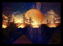 La magie de Nol (blogspfastatt (+2.500.000 views)) Tags: christmas light sky moon color colour lune landscape nice flickr lumire marchdenol ciel feliznatal moonlight nol paysage merrychristmas natale landschaft dcor feliznavidad buonnatale kolor vesele godjul joyeuxnol boasfestasefelizanonovo zaligkerstfeast frhlicheweihnachten wesolychswiat pfastatt idahsaidanwasanahjadidah sretanbozic vrolijkkerstfeesteneengelukkignieuwjaar kellemeskaracsonyiunnepeket natalehilareetannumfaustum priecigusziemsvetkusunlaimigujaunogadu linksmukaledu srekenbozhik llmiliedlttajjeb merikirihimete merrykeshmish sarbatorivesele pozdrevlyayusprazdnikomrozhdestvaisnovimgodom lamaunialekilisimasimaletausagafou hristosserodi noelinizveyeniyilinizkutluolsun srozhdestvomkristovym nayasaalmubarakho felicenatale gledeligjul vese