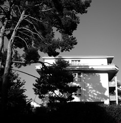 Untitled (David K. Marti) Tags: city windows light shadow sky urban bw sun white house plant black building tree nature monochrome architecture facade outdoors mono daylight blackwhite day exterior natural outdoor monotone structure architectural growth hedge growing structural