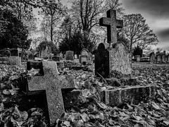 Church of St. John Baptist, Berkswell 29.11.2014 (Reynard_1884) Tags: uk greatbritain england blackandwhite bw church monochrome grave graveyard mono blackwhite village cross olympus monotone norman gravestones westmidlands warwickshire blackwhitephoto churchofengland parishchurch blackandwhitephoto villagechurch berkswell em5 stjohnbaptistchurch mirrorless churchgraveyard normanbuilding berkswellchurch microfourthirds blackwhiteonly 12thcenturybuilding dioceseofcoventry micro43rds mu43 olympusomd olympusomdem5