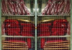 Caged in the Cellar: Disassembled Theatre Chairs and a Fire Extinguisher Behind Bars - Hinter Schlo und Gitter: zerlegte Theatersthle und ein Feuerlscher im Kfig im Spiegel - in the Mirror - Impression im Keller (hedbavny) Tags: vienna wien red green rot tower work fence underground square gold austria keller sterreich bars theater theatre diary dream cell cage storage plastic note prison pile silence jail grn pause backstage plsch turm kfig arbeit cellar tagebuch impression samt fool polster lager gitter untergrund profession feuerlscher quadrat narr stille plastik disassembled folie zelle rosine workingroom narrenturm traum werkstatt stapel gugelhupf gefngnis metapher notiz verpackt lehne schlos fermate bestuhlung maigrn klappsessel zerlegt irr haftanstalt hedbavny ingridhedbavny
