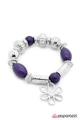 2700_2image2(purple18-81) (1)