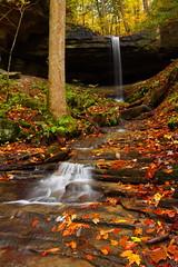 Julia Lynn Falls (MarcusDC) Tags: autumn fall waterfall hiking kentucky foliage bigsouthforknrra sheltoweetrace julialynnfalls