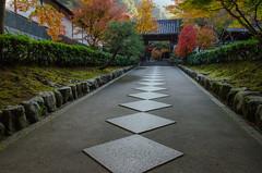 Nanzen-Ji, Kyoto /  (Kaoru Honda) Tags: morning autumn nature japan landscape temple nikon kyoto        nanzenji redleaves higashiyama       d7000