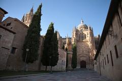 Catedral Vieja de Salamanca (formicacreativa) Tags: espana salamanca spagna catedralvieja catedralviejadesalamanca castigliaeleon