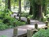 Reel Foot Lake in Missouri (belleraiser) Tags: bayou missouri cypresstrees woodenwalkway reelfootlake curvedpath