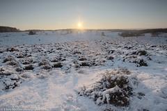 Winter landscape National park Veluwezoom (Esquascapes) Tags: winter nature sunrise landscape nationalpark wonderland veluwe veluwezoom winterwonderland winterlandscape