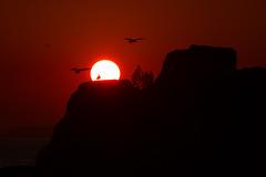 Aguete (benitojuncal) Tags: sunset sol marin galicia puesta pontevedra ria rias baixas aguete chilreu
