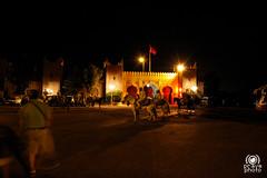 Cena con spettacolo (andrea.prave) Tags: horse music caballo cheval dance danza traditional morocco maroc musica marocco marrakech marrakesh cavalli cavallo pferd cultura cultural     moroccans equestre chezali almamlaka  marocchini marocains    visitmorocco almaghribiyya tourdelmarocco tradionale