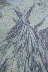 Dress in the Sand (greatdane15) Tags: beach bigsur pfiffer
