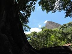 Reserva Graja, Rio de Janeiro. (Rui Lemes) Tags: rio de nikon janeiro coolpix rui p600 lemes
