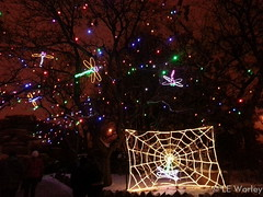 January 1, 2015 - Zoo lights light up New Year's Day night. (LE Worley)