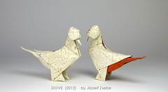 DOVE (2012) (Zsebe Origami) Tags: pigeon dove zsebe origamipigeon origamidove zsebeorigami jozsefzsebe jozsefzsebeswork zsebesworks