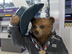 Chief Scout Bear designed by Bear Grylls (No 48) (SarahO44) Tags: bear uk england london peru hat statue canon movie airport unitedkingdom heathrow 5 five chief coat united kingdom scout terminal trail paddington paws suitcase briefcase hounslow 48 marmalade 6d toggle duffle nspcc grylls paddingtontrail