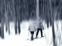 Emerveillement...dans le silence de la forêt.. (Amiela40) Tags: winter white tree forest action promenade neige arbre blanc marche forêt raquette vivant marcher bouger