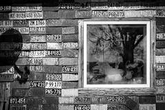 Atlas Junction Monochrome (Notley) Tags: blackandwhite reflection window monochrome wall illinois midwest licenseplate april atlas generalstore licenseplates 2016 10thavenue notley ruralphotography missourilicenseplate ruralusa pikecountyillinois notleyhawkins licenseplatewall httpwwwnotleyhawkinscom notleyhawkinsphotography illinoisphotography atlasjunction atlasillinois