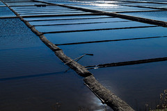 Salt marshes in the winter... (Alfredo Mateus Photography) Tags: ocean blue sea sun portugal water salt salinas aveiro marches troncalhada