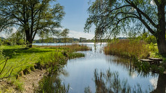 Silent place on the lake (hjuengst) Tags: trees lake green water landscape bayern bavaria see wasser wideangle landschaft bume chiemsee weitwinkel seeon