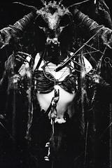 IMG_709611 (lo-fi overlord) Tags: black metal mouse death lofi taxidermy mermaid snaky nemm