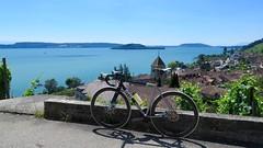 Vineyard Trail (collideous) Tags: road summer bike ride vineyards disc snob 100km twann ritte 16072016