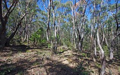 Lot 54, 122 Valley View Rd, Dargan NSW