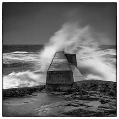 Force five (stejo) Tags: seascape storm wind wave windy balticsea gale beaufort östersjön landsort våg kuling vågbrytare öja ilobsterit