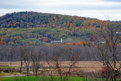 On the side of the hill (arda292000) Tags: trees fall colors beautiful leaves landscape fallcolors adirondacks upstateny beautifulcolors argyle adirondackmountains argyleny