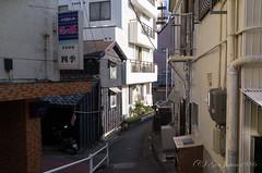 渡鹿野島 (GenJapan1986) Tags: travel japan 日本 旅行 mie 2014 離島 三重県 志摩市 ricohgxr 渡鹿野島