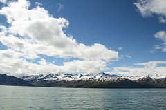 (mightymightymatze) Tags: trip summer vacation holiday nature water outdoors island iceland wasser sommer natur insel whale whales ferien husavik wale wal whalewatching 2014 hsavk