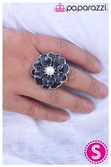 224_ring-silverkit1may-box03