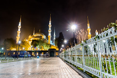 citytrip-istanbul-8 (kevn.nl) Tags: city trip travel blue horse history bicycle night turkey photography islands day carriage basilica culture istanbul palace mosque sultan princes ahmed topkapi sophia hagia aladar kadikoy uskudar citytrip sarayi cisterne yerebetan