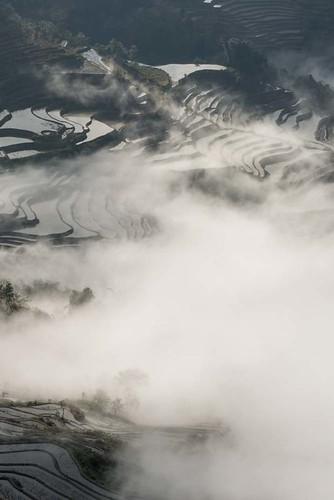 La région de Yuanyang
