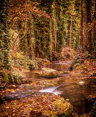 Baos de Popea, Crdoba (miguel_lorente) Tags: longexposure autumn espaa naturaleza nature water ro river spain agua sony sigma otoo crdoba largaexposicin 30mmf28 arroyobejarano baosdepopea nex3n