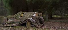 old communist air base (Jan Malkovsky) Tags: old trash forest foam torn urbex couche destoryed