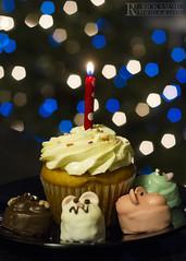 1/365 - Cupcake & Minis