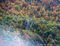 Power Lines (Concert_Photos_Magazine) Tags: autumn usa mountain mountains lines electric forest grid power unitedstates fallcolors northcarolina utility aerial autumncolors powerlines powerline cashiers electrical tension current amps blueridgemountains utilities transmission highvoltage voltage electricty westernnorthcarolina transmissionlines electricpowertransmission 11902487142
