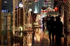 rainy illumination #2 (hauko) Tags: christmas winter tokyo shinjuku illumination canoneoskissx2