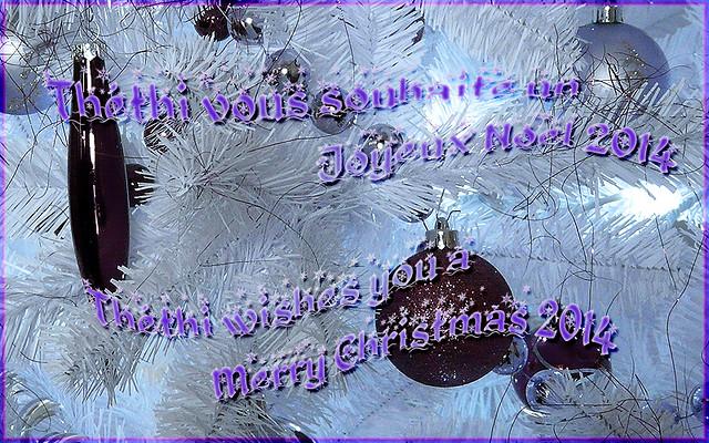 Joyeux Noël 2014 Merry Christmas