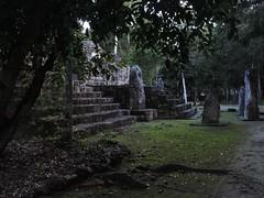 México - Calakmul / Ruinas Mayas (Galeon Fotografia) Tags: méxico calakmul ruinasmayas maya archäologie arqueología archéologie археология archeology mexico мексика mexique galeonfotografía