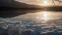 loch garten winter 1 (malcolm cross) Tags: winter sunset mountains reflection ice water clouds reflections landscape scotland nikon loch lochgarten nikond90