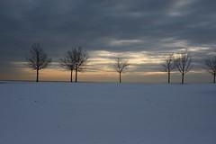 Sunrise Chicago (Bryan_Hayes) Tags: chicago lakemichigan belmontharbor