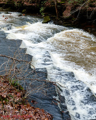 On Bobo Creek - Short Springs State Natural Area - Jan. 2015 (mikerhicks) Tags: winter usa landscape geotagged unitedstates hiking tennessee tullahoma lakehills tennesseestateparks shortspringsstatenaturalarea bobocreek canon7dmkii sigma18250mmf3563dcmacrooshsm geo:lat=3540732500 geo:lon=8617926167
