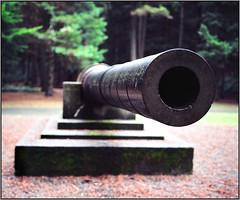 "USS Boston 8"" Gun (NoJuan) Tags: 120 mamiya film mediumformat 120film artillery 6x45 mamiya645 rollfilm seattlewa seattlepark 120rollfilm hamlinpark kodakportra160 navalguns mamiya6451000s ussboston urbanartillery artilleryinparks 55mmmamiya"