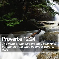 Daily Bible Verse - Proverbs 12:24 (daily-bible-verse) Tags: photography grace jesussaves purpose savior scriptures godisgood