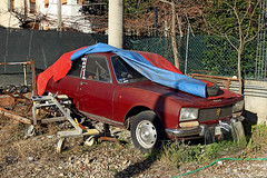 PEUGEOT 504 (marvin 345) Tags: auto italy cars abandoned car vintage automobile italia oldtimer abandonment veneto abbandono peugeot504 autoepoca carvintage worldcars carfrance autoabbandonate